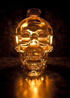 Gorgeous fan photography of Crystal Head Vodka!