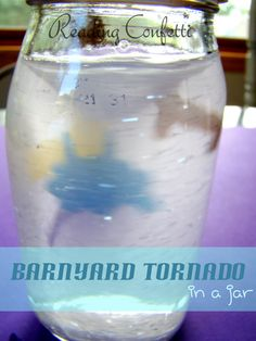 Barnyard Tornado in a Jar
