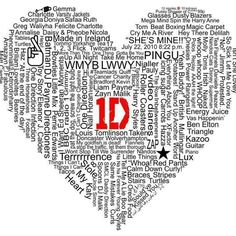 Calling yourself a directioner means you accept the boys for who they are and love them forever.