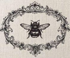 bumble bee, decorative frame, illustration, vintage style