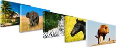 Canvas Prints @ lowest price in India starts with Rs. 400 free delivery