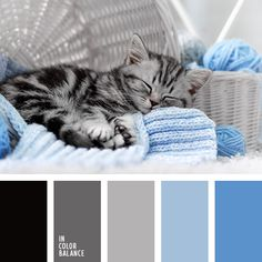 Цветовая палитра №3696