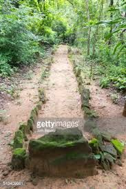 Image result for walking meditation path
