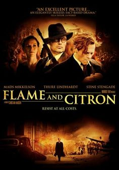 @alplath have you seen this? Flame and Citron (2008) tells the story of 2 WWII Danish resistance fighters Flame (Thure Lindhardt) and Citron (Mads Mikkelsen), who team up to assassinate Nazis and Danish collaborators during the Nazi occupation of their country. Life as a hit man for your local resistance can be darn complicated. This was a terrific movie for that reason.