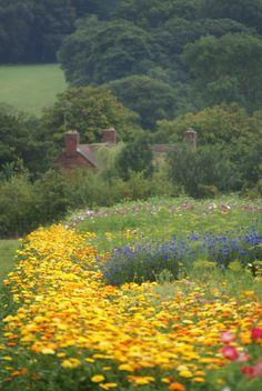 Wild Flowers Inspiration : A cross between a wild flower meadow and a cutting garden! Beautiful Gardens, Beautiful Flowers, Beautiful Places, English Country Gardens, English Countryside, Gray Garden, Garden Cottage, Meadow Garden, Exterior