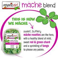 organicgirl mâche blend  #organicgirl #mache #macheblend