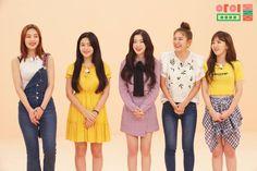 Photo album containing 6 pictures of Red Velvet Wendy Red Velvet, Red Velvet Joy, Red Velvet Irene, Velvet Style, Kpop Girl Groups, Korean Girl Groups, Kpop Girls, Seulgi, Velvet Fashion
