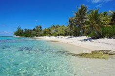 French Polynesia tropical beach shore with trees on the south of Huahine island, Pacific ocean