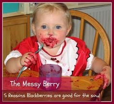 5 Reasons why Blackberries are good for the soul from Mummyology