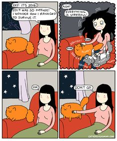 Hope you have a happy and fluffy Cat Vs Human, A Comics, Funny Cats, Memes, Peanuts Comics, Humor, Happy, Cute, Artwork