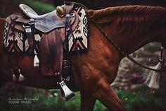 Beautiful Western Horse | Western Tack | Saddle | Equine Photography