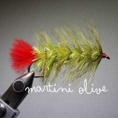 pyramid-lake-woolly-worm-martini-olive