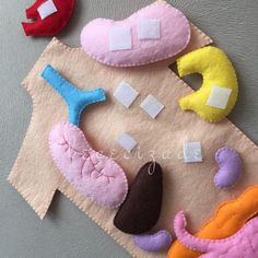 Human anatomy felt set, science toy, educational felt story, montessori at home… Human Body Activities, Book Activities, Diy For Kids, Crafts For Kids, Help Kids, Learning Toys For Toddlers, Learning Games, Felt Stories, Science Toys