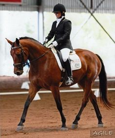 cute horse  name | Found on riverrange.com.au