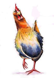 """CHICKEN"" A4 SIGNED PRINT From Original Watercolour Painting By Maria Moss 