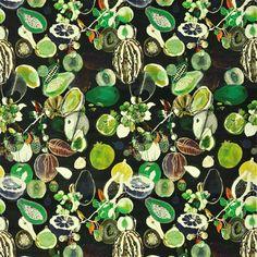Une merveille de la dernière collection de tissus Christian Lacroix !!! Soft manaos - onyx