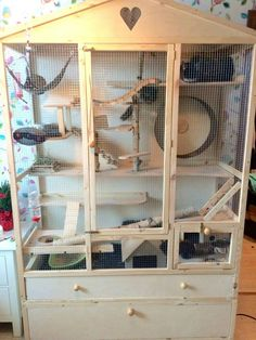 Large Hamster Cages, Conure Cage, Critter Nation Cage, Rodents, Hamsters, Chinchilla Cage, Rat Cage, Hangout Room, Degu
