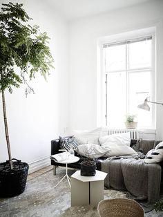 Living room. Interior Design. Grey.