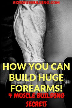 how to build your forearms
