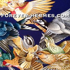 """In our store http://forever-hermes.com #ForeverHermes the MindBlowing Hermes Paris Silk Scarf featuring finch birds only, depicted in stunning detail by the master bird painter Antoine De Jacquelot titled L'intrus meaning """"the intruder"""" would make an impressive Wall Decoration for #BirdieSanders lovers #birds #birdwatching #dapper #gentleman #MensSuit #MensWear #menstyle #mensfashion #necktie #womensfashion #womenswear #fashionista  #Hermes"""