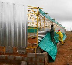 Tavuk çiftliği inşaası nasıl yapılır