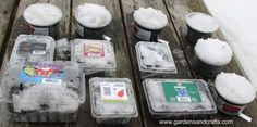 How to winter sow seeds for spring planting.  No seed starting experience necessary, just let Mother Nature do her work.
