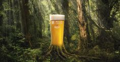 876 Best Beer Education Images On Pinterest Beverages