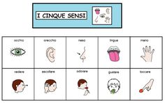 comuniCAAzione: I cinque sensi Italian Vocabulary, Italian Language, Learning Italian, Language Activities, Special Needs, Creative Photography, Communication, Teaching, School