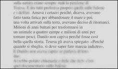 Cetacei /// Come Dio comanda -N. Ammaniti