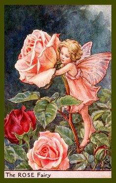 The Rose Fairy by Cicely Mary Barker from the 1920s. Quilt Block of vintage fairy image printed on cotton. Ready to sew.  Single 4x6 block $4.95. Set of 4 blocks with pattern $17.95.