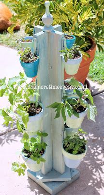 Spinning Mint Herb Garden...great for small space patio