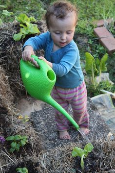 How to Start a Summer Garden ~ The Thrifty Way by thebyronlife #Garden #Straw_Bale