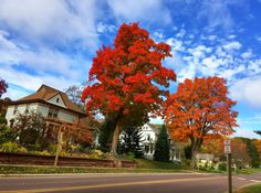 Photo credit: Mark Phillips #fallcolor #bayfieldwi #oldrittenhouseinn