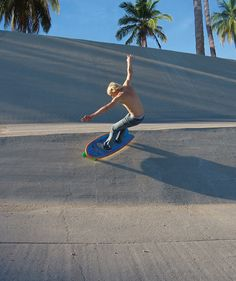 Hamboards combines skateboard and surfing