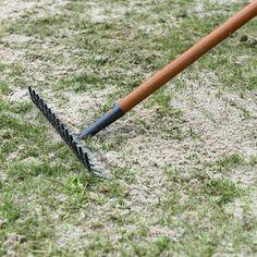 Permanently remove moss: This will make your lawn beautiful again- Moos dauerhaft entfernen: So wird Ihr Rasen wieder schön Apply sand to the grass - Garden Types, Herb Garden Design, Container Gardening Vegetables, Vegetable Garden, Small Gardens, Outdoor Gardens, Garden Pool, Diy Garden, Gardening For Beginners