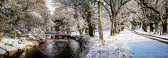 The Swaying Bridge. Colebrooke Estate in Winter. www.donniephair.com