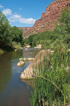 Upper Verde River, Prescott National Forest, Arizona   Gary Beverly