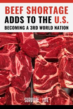 Survivalists may want to start preparing for another possible supply problem – this time, with beef. Read all about the beef shortage the US is currently experiencing so you're better prepared for this crisis situation. #USbeefshortage #beefshortage #beefsupply #survivallife Survival Life, Camping Survival, Survival Prepping, Food Storage Organization, Food Storage Containers, Long Term Food Storage, Life Guide, Food Hacks, How To Become