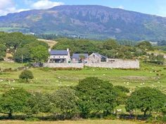 Garth Morthin The Stables - A delightful, stone cottage. Pretty sheltered gardens, stylish luxury interior with multi-fuel stove and spiral staircase. Cottages Uk, Multi Fuel Stove, Snowdonia, Spiral Staircase, British Isles, Luxury Interior, Stables, Golf Courses, Travel