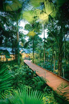 """Australia l A hidden lodge """"Silky Oaks Lodge"""" in an Australian rainforest. Walk down the wooden path in Tadashi Shoji's  Kiri Dress."""