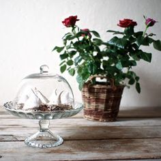Laskominy od Maryny: Pusinky s ořechy a čokoládou Table, Home Decor, Lemon, Decoration Home, Room Decor, Tables, Home Interior Design, Desk, Tabletop