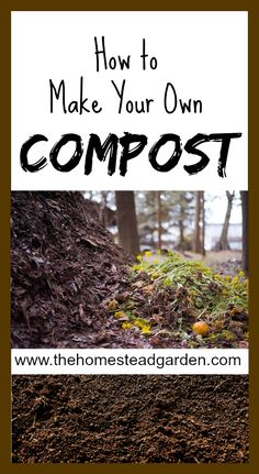Learn how to make your own compost. This is simple to do, it is a frugal idea for your food scraps, and it gives your plants a very healthy soil in which to thrive.