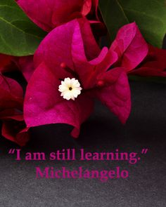 """""""I am still learning.""""  Michelangelo  -- BACK TO SCHOOL – Know what questions to ask your child's school and teachers.  Empower this new school year with a free resource from the US Department of Education.  Learn more at http://www.examiner.com/article/back-to-school-resource-for-empowered-parents-and-families?CID=examiner_alerts_article"""
