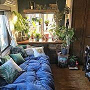 Bedroom,DIY,出窓,ニトリ,クッションカバー,フラミンゴに関連する他の写真
