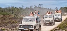 Off road adventure with a fun Jeep Safari in the Algarve. Head inland, up hills and down dales, sample medronho and honey. http://www.sandyblue.com/Activity/Adventure/Jeep-Safari  Jeep Safari - Adventure Activities in Algarve - SandyBlue Activities