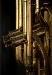 Brass Musical Instrument Brass Musical Instruments, Les Themes, Illustrations, Musicals, Photos, Images, Pictures, Illustration, Musical Theatre