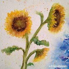 Sunflower, watercolor painting / commissioned artwork / Girassol, aquarela feita sob encomenda. Adriana Galindo drigalindo1@gmail.com