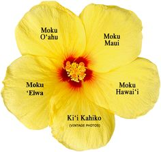 Resource website for Hawaiian Language and culture.