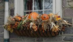 Google Image Result for http://1.bp.blogspot.com/_RnKAiurURG0/TKU2juivJ9I/AAAAAAAAGL8/56ZKDESnZwk/s640/hayrack_pumpkin_500.jpg