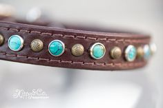 Turquoise Dog Collar, Concho Dog Collar, Antique Brass Spot, Turquoise Leather Dog Collar on Etsy, $59.00